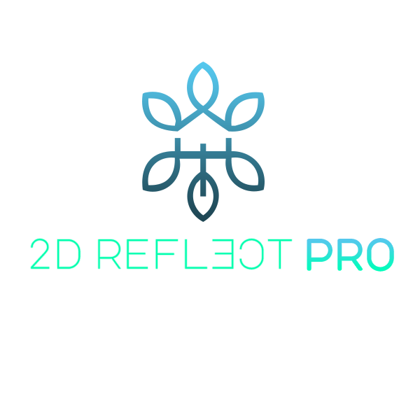 2D Reflect Pro