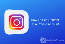 How To View Private Instagram Account Without Human Verification