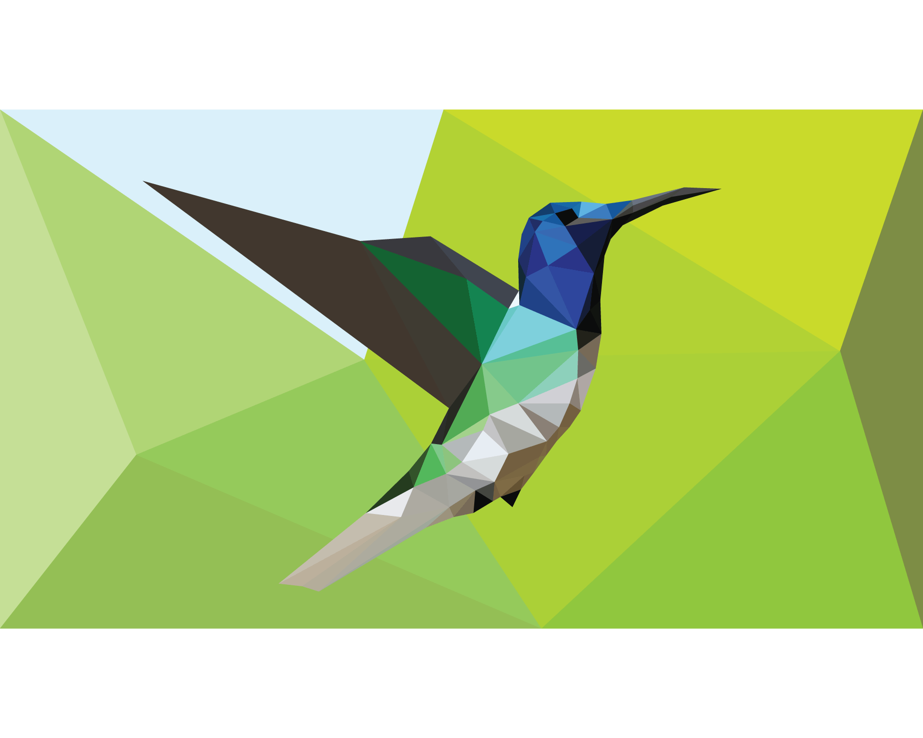 Hummingbirds in low poly style