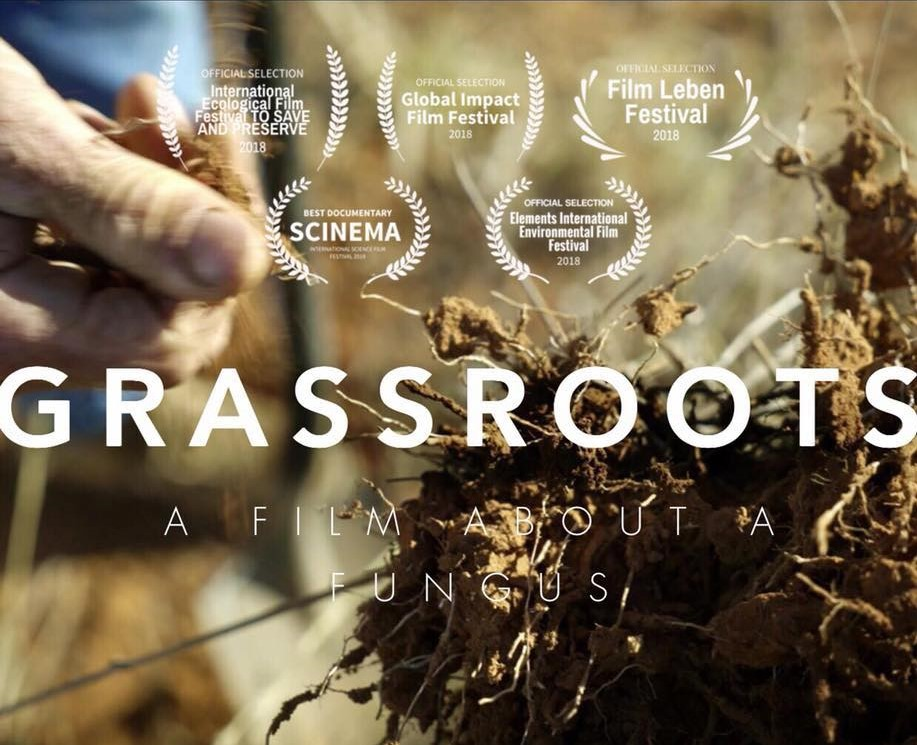 Grassroots: A Documentary