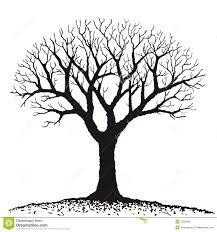 Arbor Life