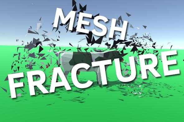 Mesh Fracture