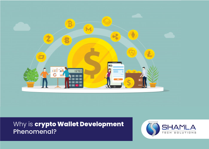 Why do you Need a Cryptocurrency Wallet? Here you go!