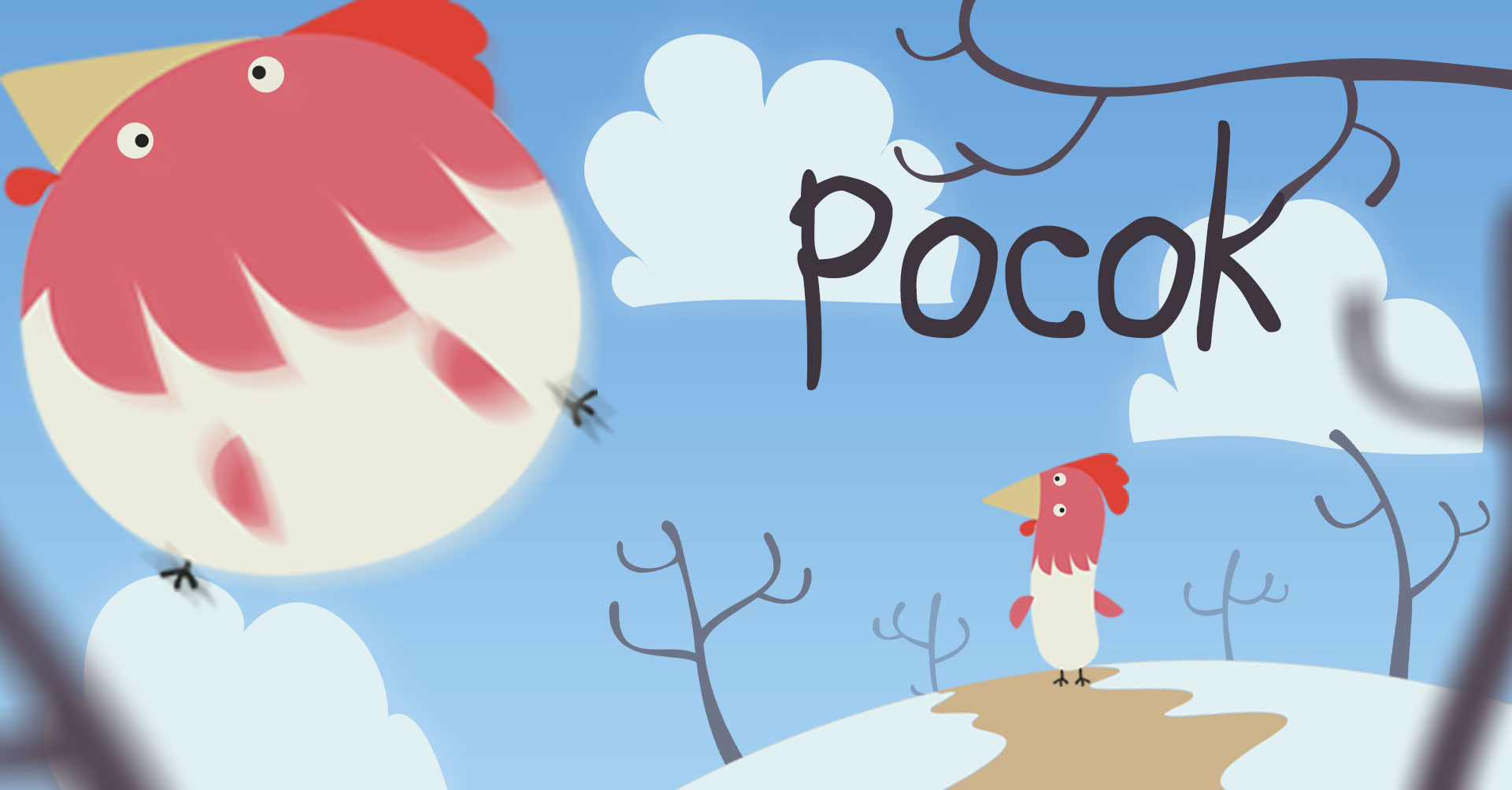 Pocok