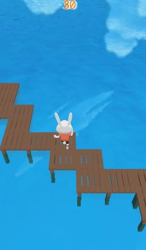 Zig-zag Bunny