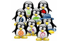 8 Best Linux Distros For Programming And Developers (2017 Edition)