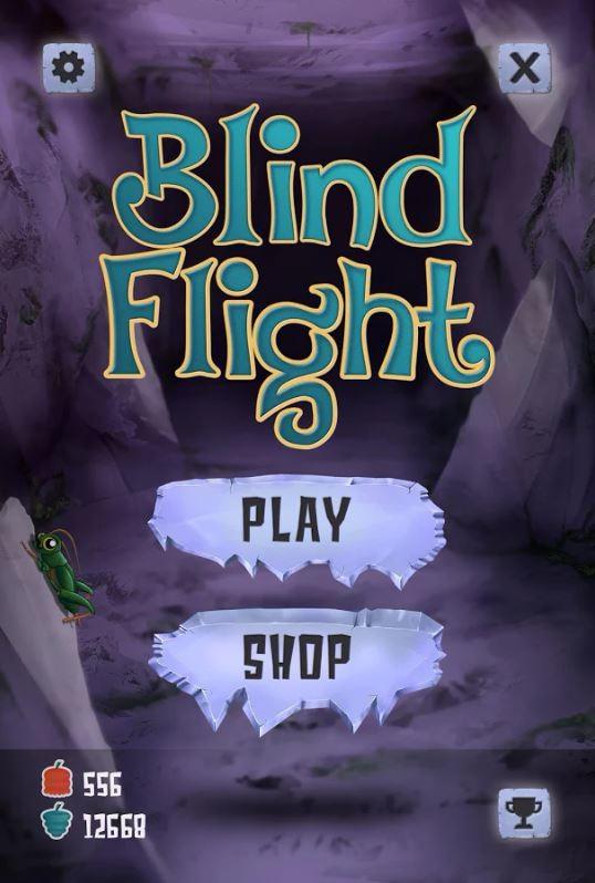 Blind Flight Artwork
