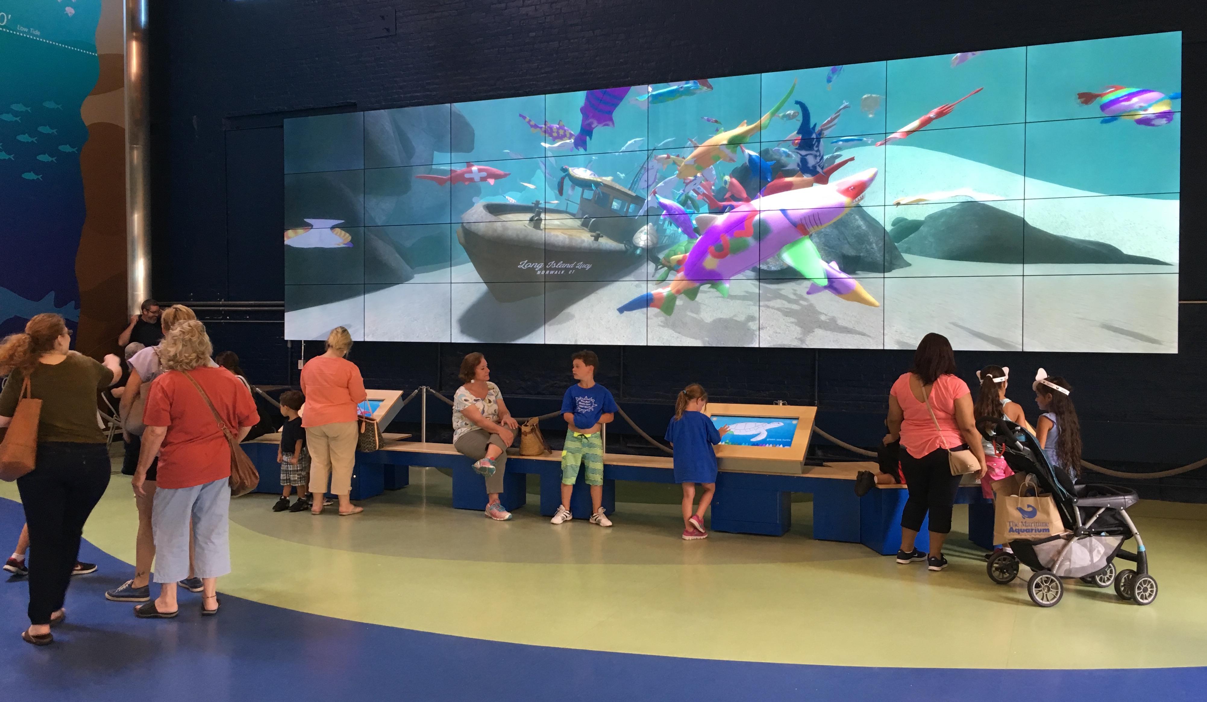 Norwalk Aquarium 3D Fish Wall