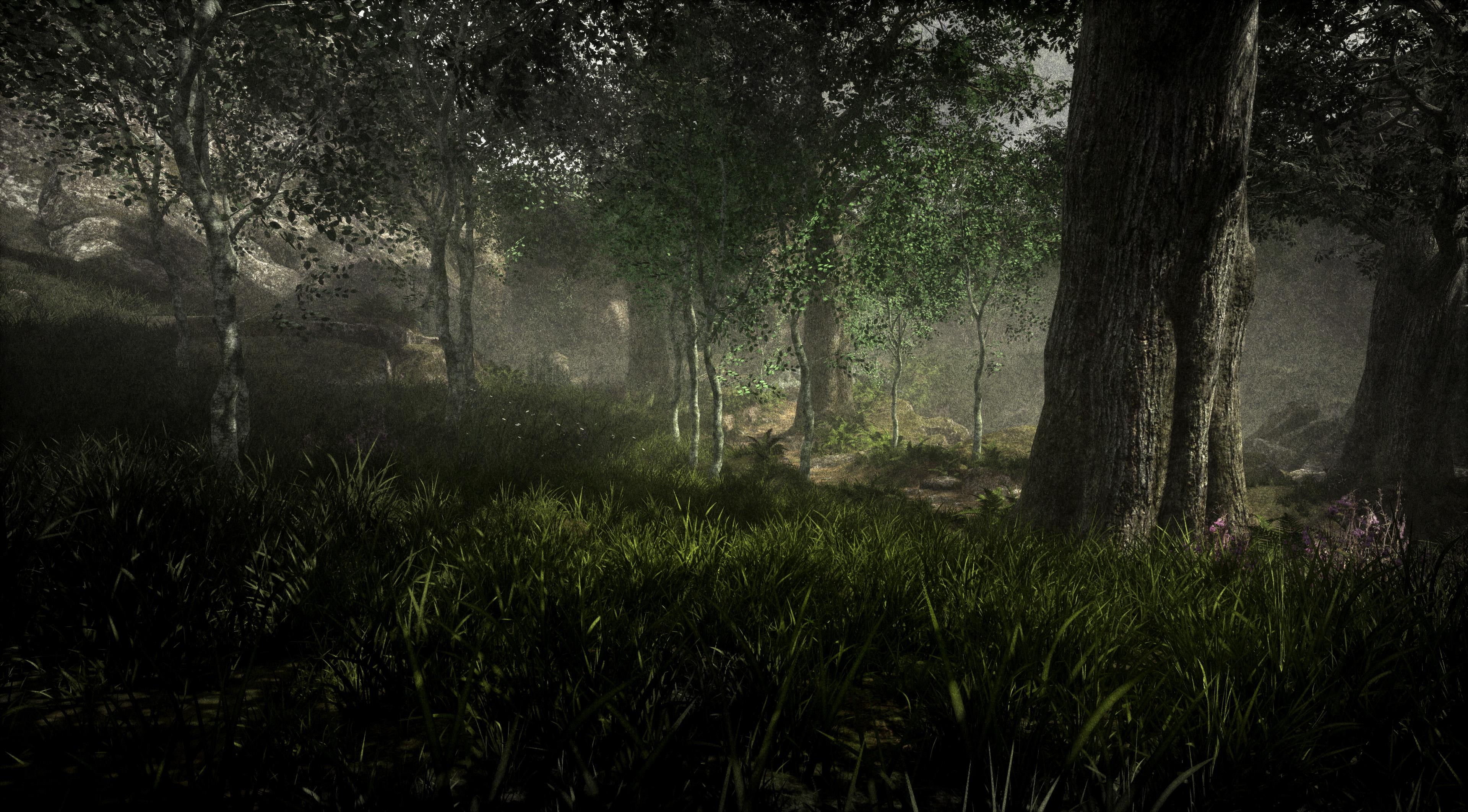VR Environment Design