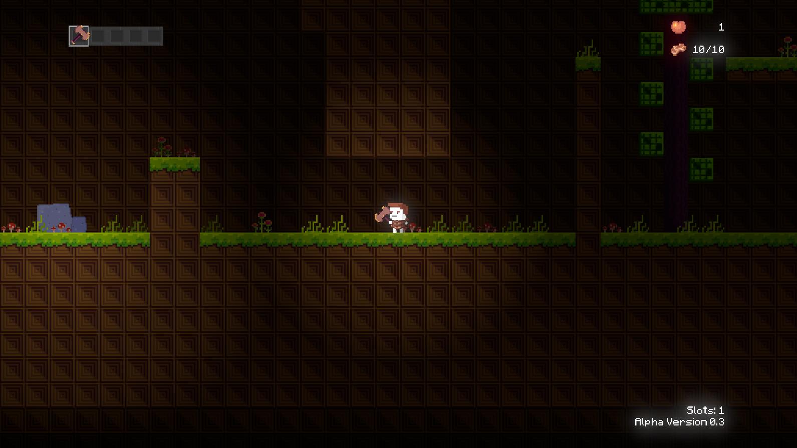 The Cave Adventure!