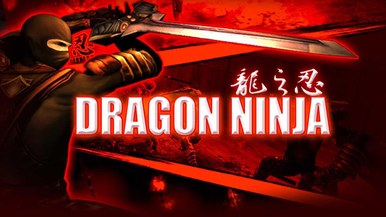 Dragon Ninja VR