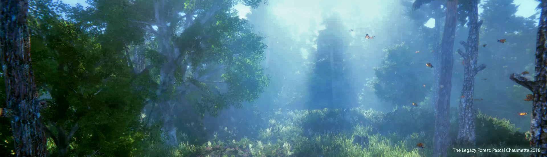 The Legacy Forest: Unity 2017.3
