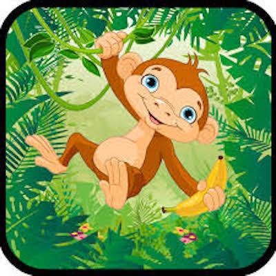 Super Monkey Lander