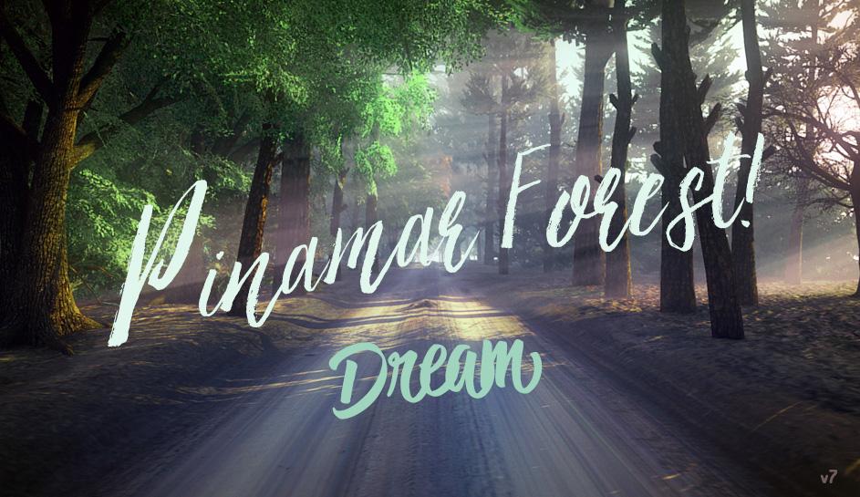 Pinamar Forest Unity Virtual Dream