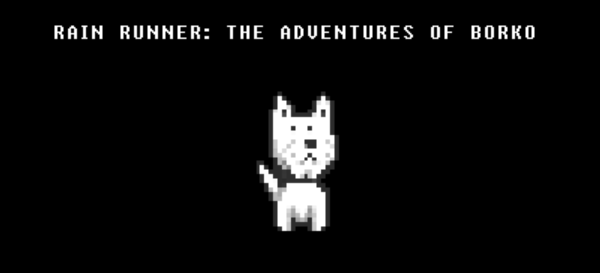 Rain runner: THE ADVENTURES OF BORKO