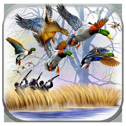 Duck Hunting 3D: Seasons 2017