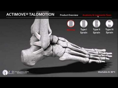 3D Human Anatomy - Foot Interactive Application