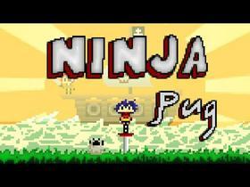 Ninja Pug