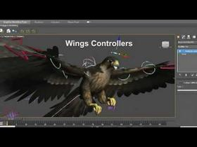 Animated Peregrine Falcon