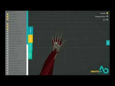 Hand Avatar Project